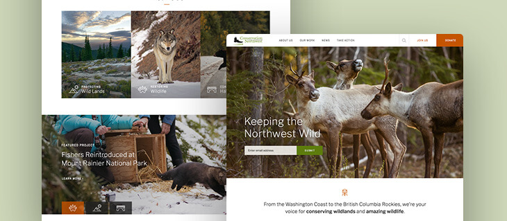 Environmental Services Website Redesign Launched for Bellingham-Based Non-Profit Conservation Northwest