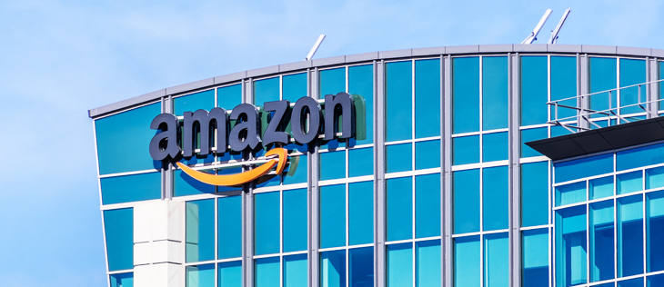 Amazon: competitive or complementary sales channel?