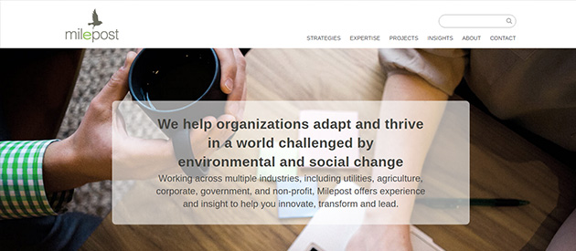New Professional Service Website for Milepost Consulting!